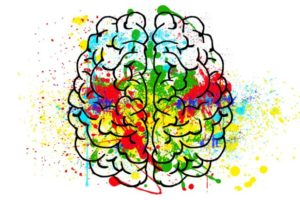 brain-2062048_1920-800×411